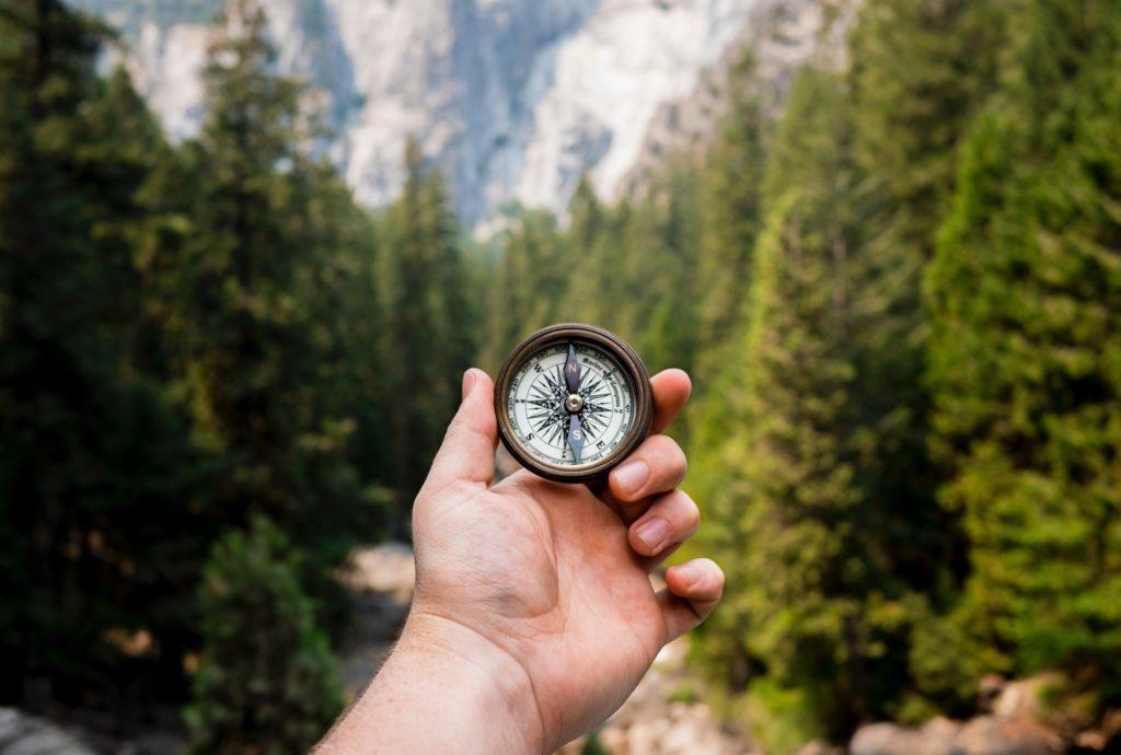 Person, die den Kompass in Richtung grüner Kiefern hält.